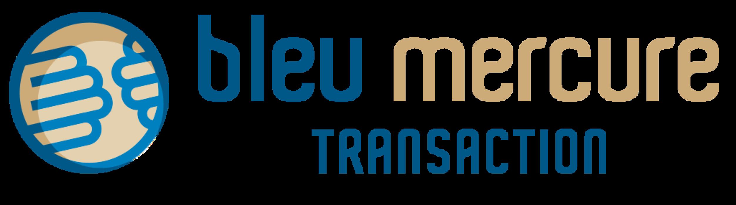 Bleu mercure transaction 0